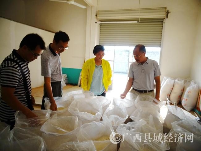 来宾市质监局到忻城调研名优产品护航工作
