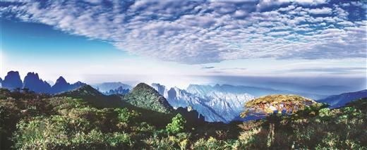 来宾:心容天下奋进新来宾 敢为人先开启新征程