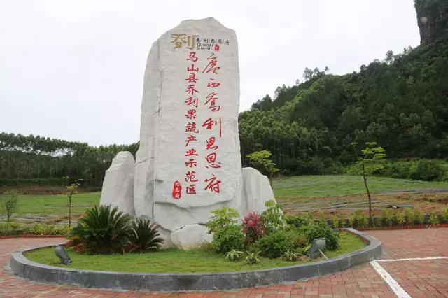 南宁新增四个自治区级现代特色农业示范区