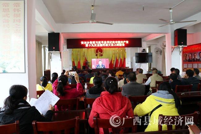 [大化县]瑶山干群认真组织收看十九大开幕式盛况