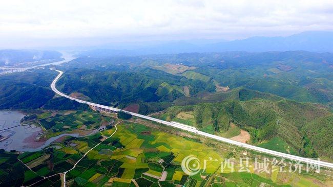 图5:10月19日,在广西柳州市融安县浮石镇隘口村拍摄的金色田园。(谭凯兴 摄)