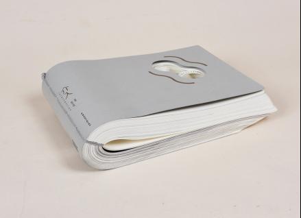 书名:介入 书籍设计:吴勇 出版单位:中国建筑工业出版社