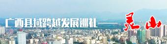 广西县域跨越发展巡礼――灵山