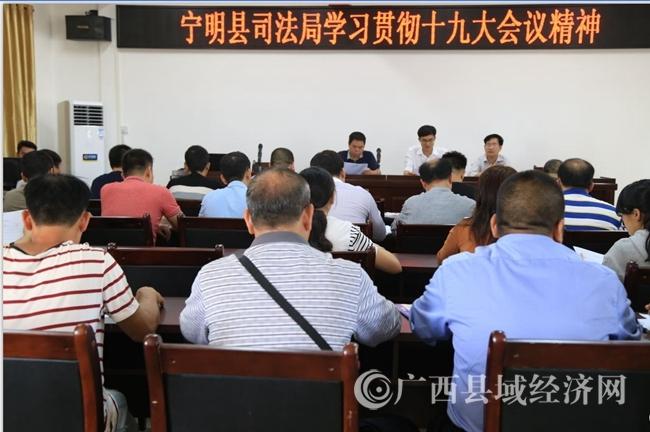 宁明县司法局深入学习贯彻党的十九大精神