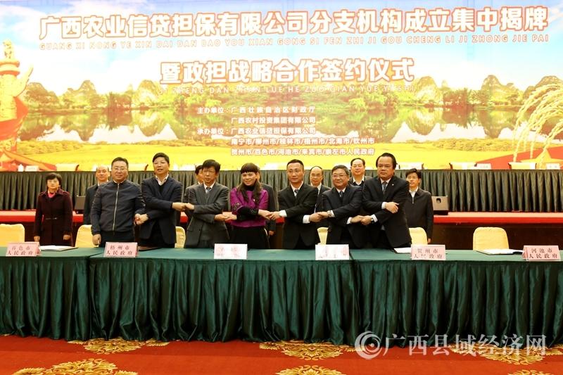 广西农业信贷担保体系基本建成 全力服务乡村振兴战略