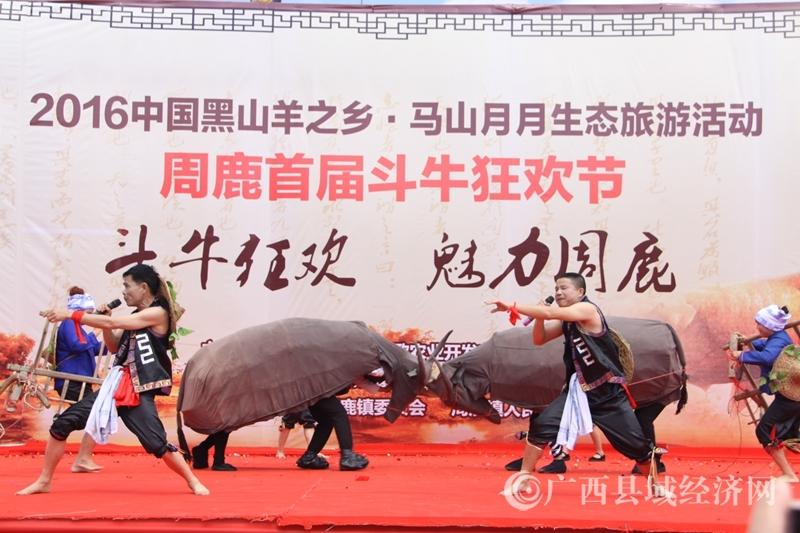 [马山县]周鹿镇第二届斗牛旅游美食节将于12月31日举办