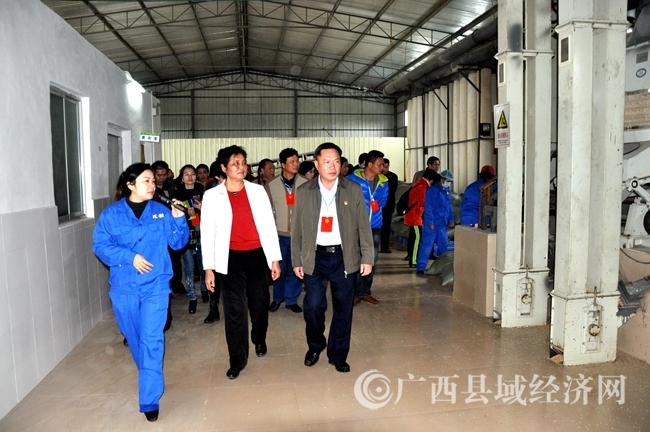 [防城区]组织自治区、市、区人大代表到上思县视察考察脱贫攻坚工作