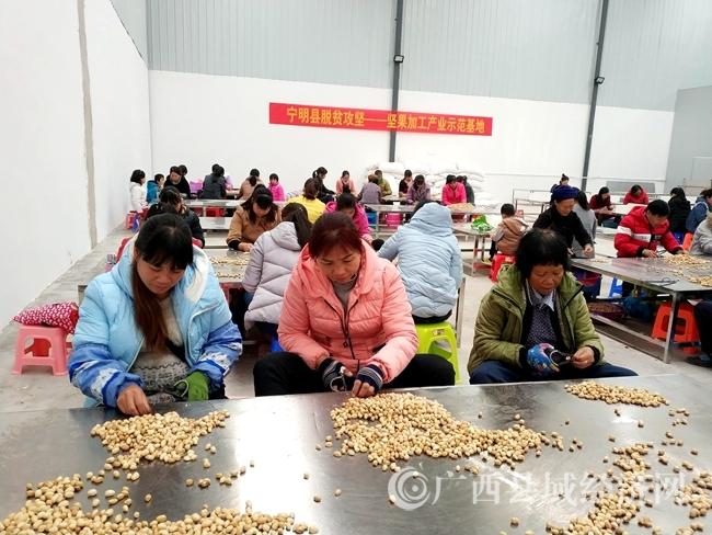 宁明引进落地边贸加工企业帮扶一批贫困边民之一.jpg