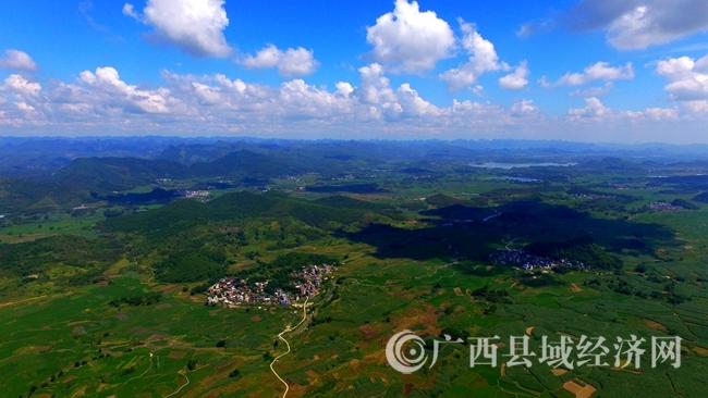[融安县]山区贫困县拿出千万元补贴蔗农种蔗