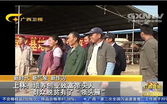 """[上林县]培养创业致富带头人 群众脱贫有了""""领头雁"""""""