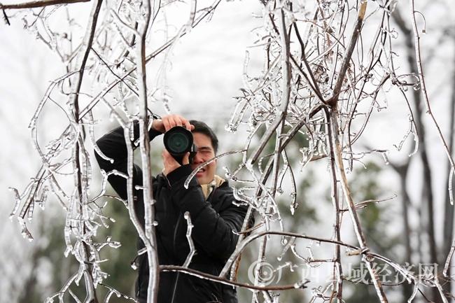 图12:1月27日,在国道357线广西柳州市融安县泗顶镇路段,一名新闻工作者在拍摄冰冻。(谭凯兴 摄)