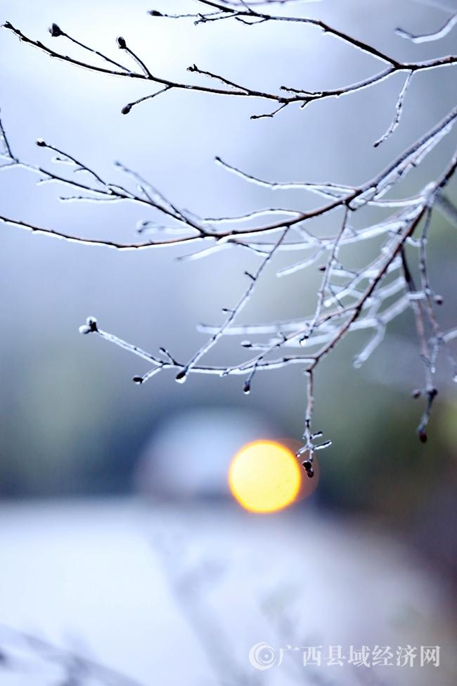 图8:1月27日,一辆客车经过国道357线广西柳州市融安县泗顶镇结冰路段。(谭凯兴 摄)
