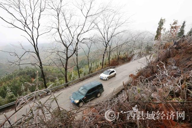 图9: 1月27日,客车经过国道357线广西柳州市融安县泗顶镇结冰路段。(谭凯兴 摄)