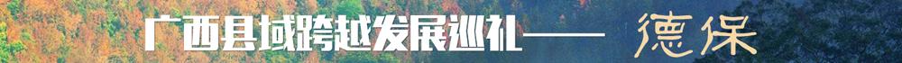 广西县域跨越发展巡礼——德保