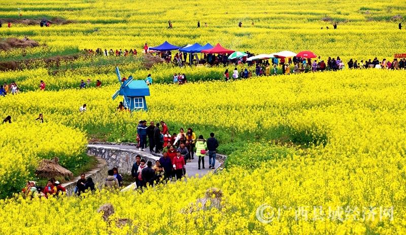 南丹县农业局产业富民之