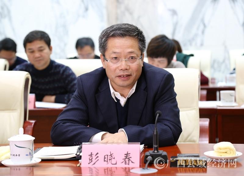 百色市委书记、市人大常委会主任彭晓春在座谈会上发言表态。