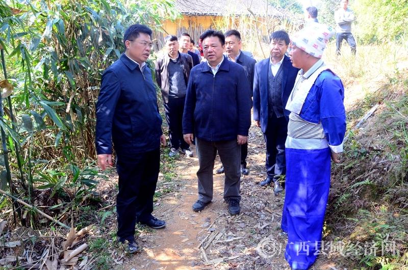 贺州市长林冠到平桂区鹅塘镇调研深度贫困村脱贫攻坚工作