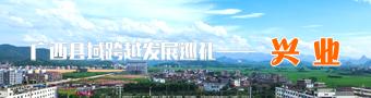 广西县域跨越发展巡礼――兴业