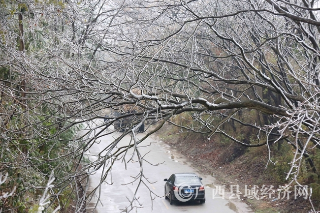 图4:1月27日,一辆客车经过国道357线广西柳州市融安县浮石镇结冰路段。(谭凯兴 摄)