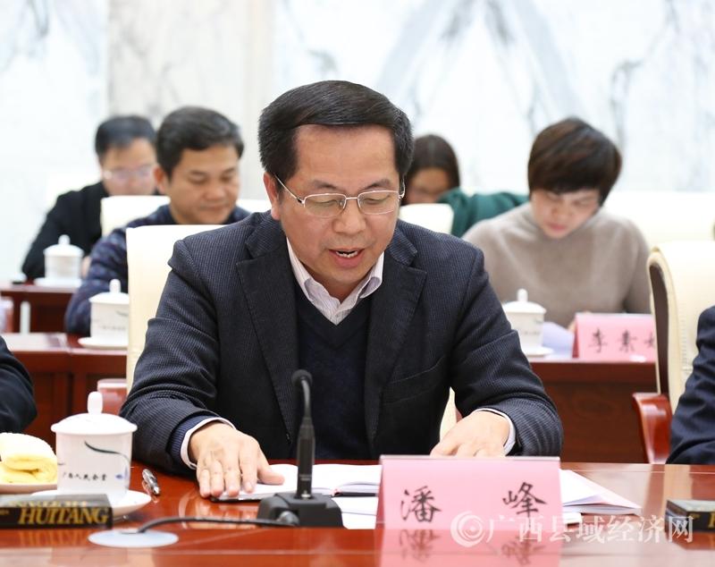 """自治区工信委副主任潘峰代表""""铝产业及其他特色产业发展""""讨论组作建议汇总发言。"""