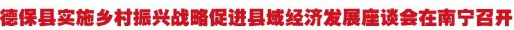 德保县实施乡村振兴战略促进县域经济发展座谈会在南宁召开