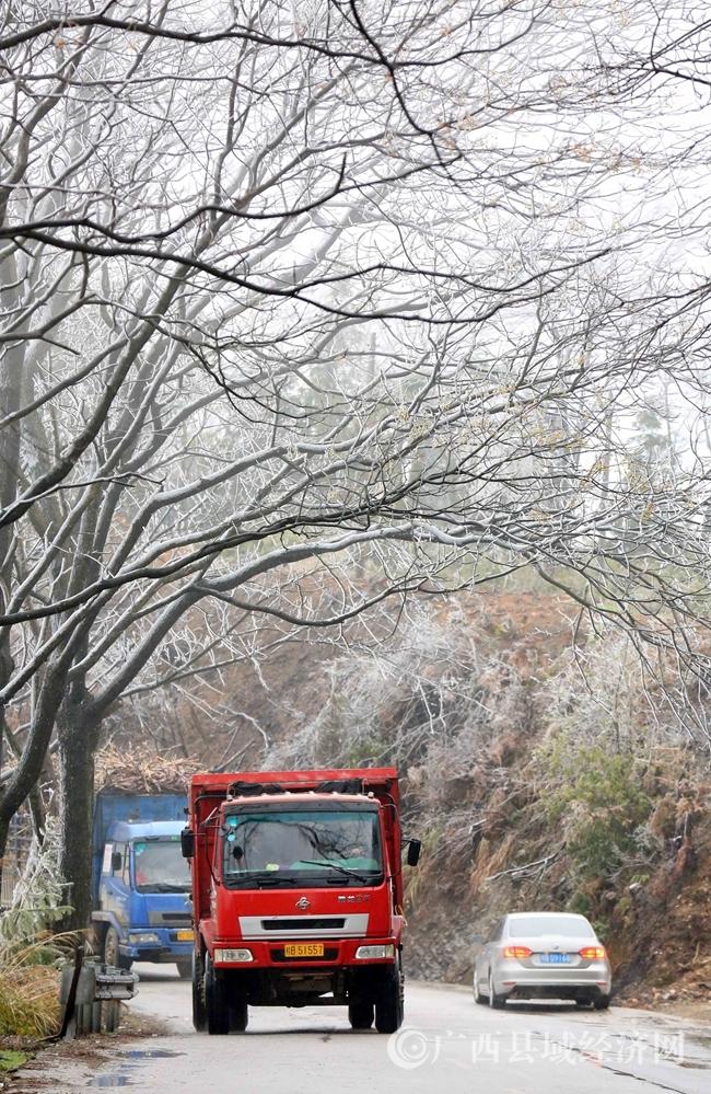 图2:1月27日,货车经过国道357线广西柳州市融安县浮石镇结冰路段。(谭凯兴 摄)