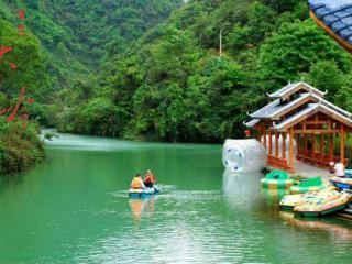 百色大王岭原始森林景区