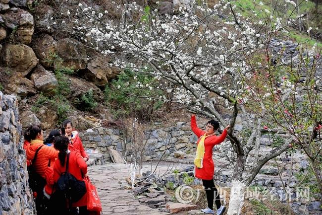 图3:2月25日,游客在广西柳州市融安县东起乡崖脚村铜板屯游玩。(谭凯兴 摄)