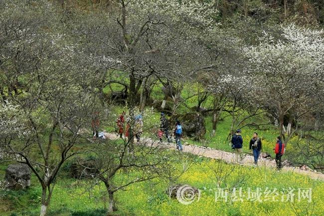 图10:2月25日,游客在广西柳州市融安县东起乡崖脚村铜板屯游玩。(谭凯兴 摄)