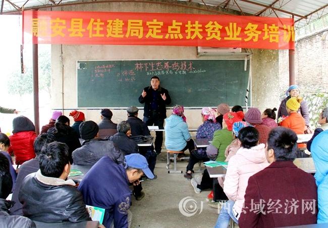 [融安县]长安镇泗朗村: 产业引领 助力脱贫
