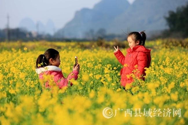 图5:1月31日 ,在广西柳州市融安县沙子乡红妙村,两名小朋友油菜花田中游玩。(谭凯兴 摄).JPG