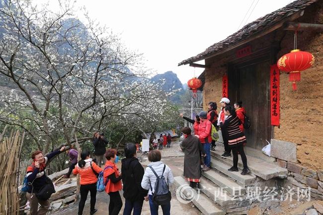 图1:2月25日,游客在广西柳州市融安县东起乡崖脚村铜板屯游玩。(谭凯兴 摄)