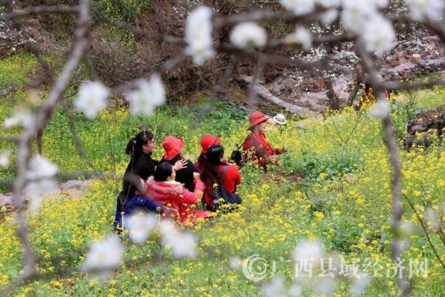 图7:2月25日,游客在广西柳州市融安县东起乡崖脚村铜板屯游玩。(谭凯兴 摄)