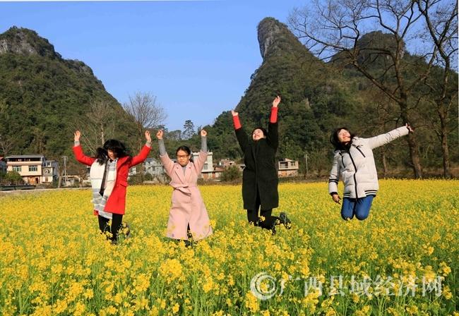 图8:1月31日,游客在广西柳州市融安县沙子乡红妙村油菜花田中游玩。(谭凯兴 摄).JPG