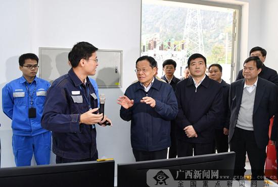 陈武深入那坡田东两县就实施乡村振兴战略进行调研