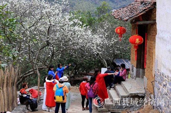 图4:2月25日,游客在广西柳州市融安县东起乡崖脚村铜板屯游玩。(谭凯兴 摄)