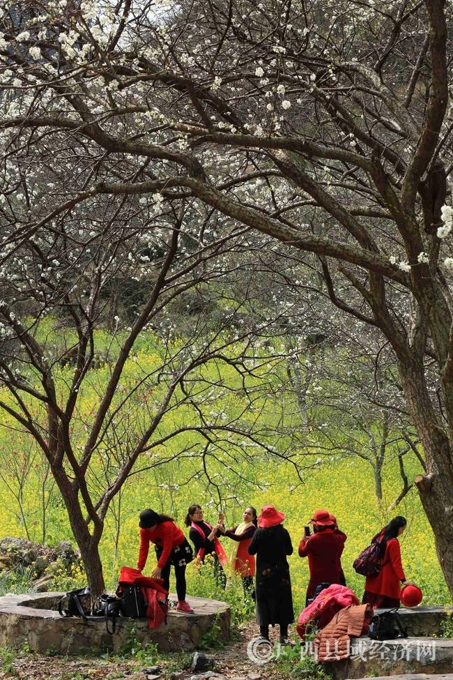 图9:2月25日,游客在广西柳州市融安县东起乡崖脚村铜板屯游玩。(谭凯兴 摄)