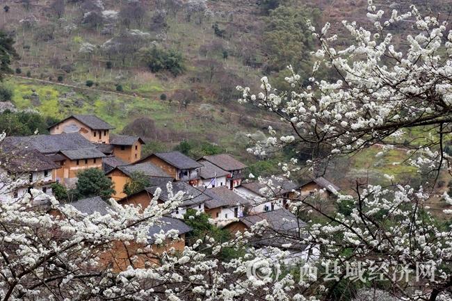 图12:2月25日,在广西柳州市融安县东起乡崖脚村铜板屯拍摄的美丽乡村。(谭凯兴 摄)