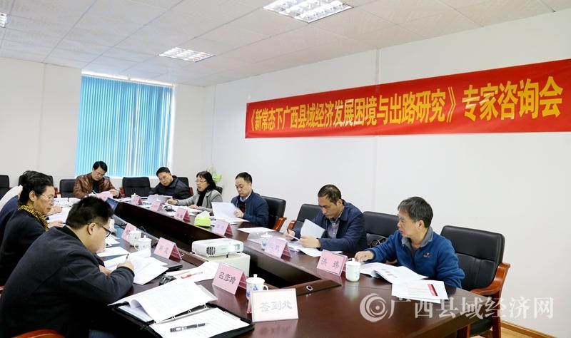 《新常态下广西县域经济发展困境与出路研究》专家咨询会召开