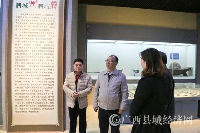 莫庸县长在博物馆督查指导工作 (1)