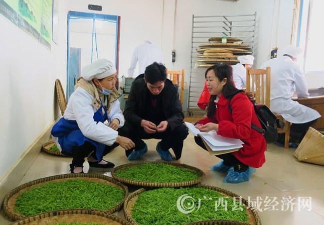 [南丹县]开展农业合作社、企业复产复工安全生产巡查工作