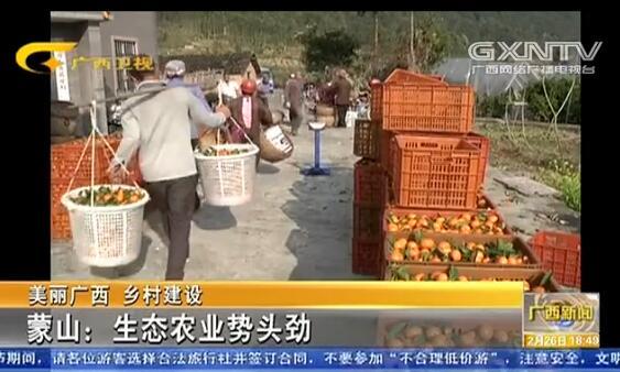 [蒙山县]生态农业势头劲