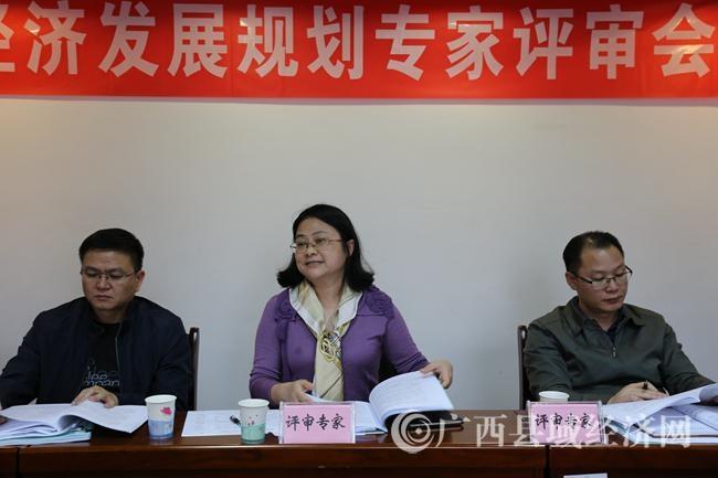 评审组专家在会上发表评审意见