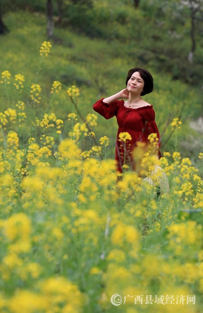 图6:3月2日,游客在广西柳州市融安县东起乡崖脚村铜板屯踏青赏花。(谭凯兴 摄)