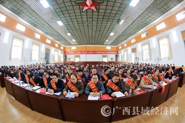 图5:3月5日,在融安县人民会场,获表彰的企业代表参加表彰大会。(谭凯兴 摄)