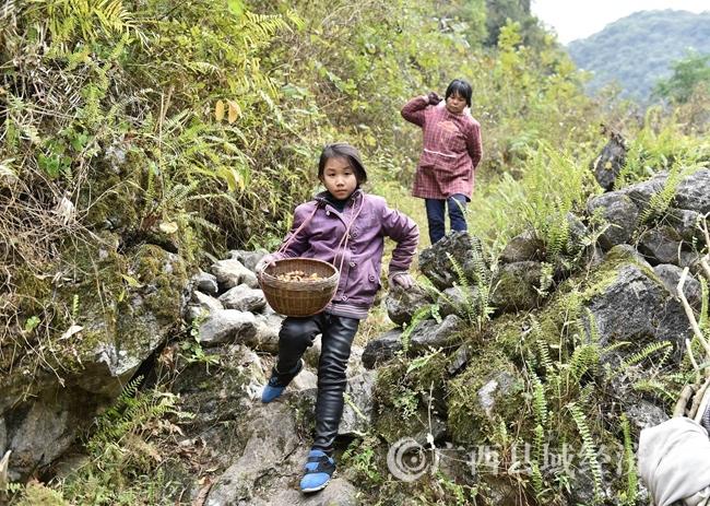 2.罗珊和外婆行走在捡金缨子的山路上。.jpg