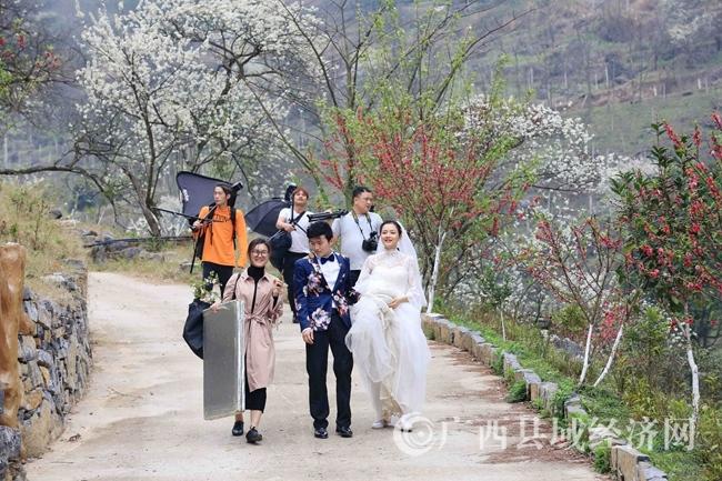 图3:3月2日,游客在广西柳州市融安县东起乡崖脚村铜板屯踏青赏花。(谭凯兴 摄)