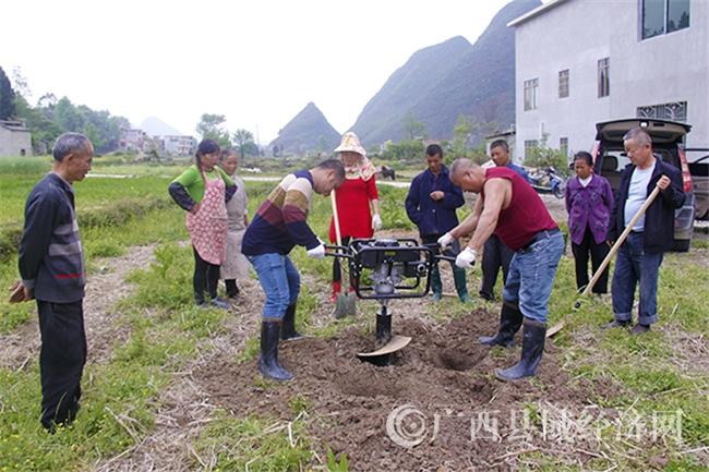 南丹县农业局有序开展耕地土壤重金属