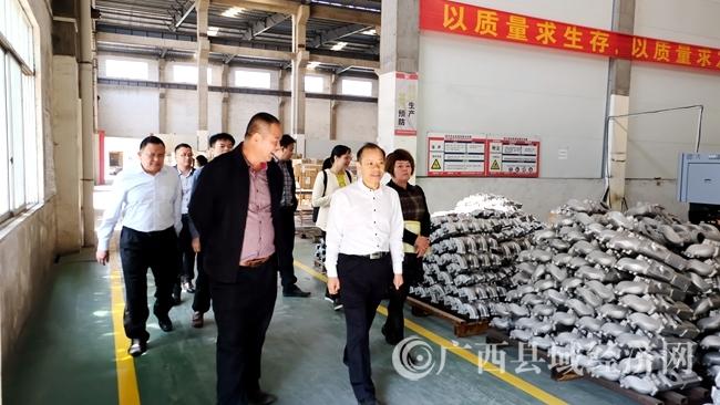 图为农长效副主席在平果鑫发环保材料有限公司调研.JPG
