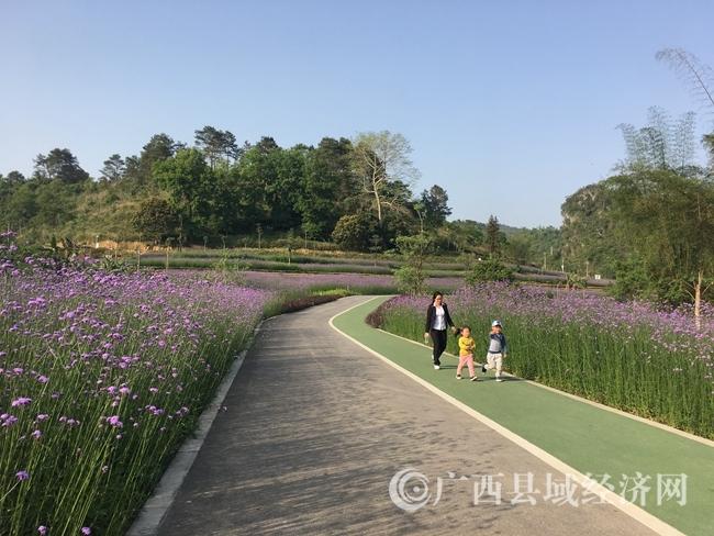 4月8日,游客在大阳幽谷花海踏青赏花。